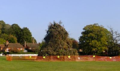 Bonfire with fence on village green