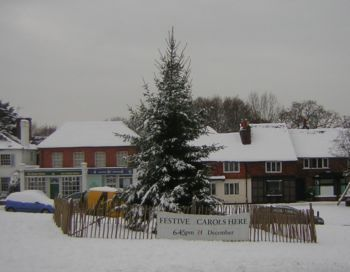 Tree on village green with snow and shops