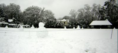 Snowmen  on cricket pitch